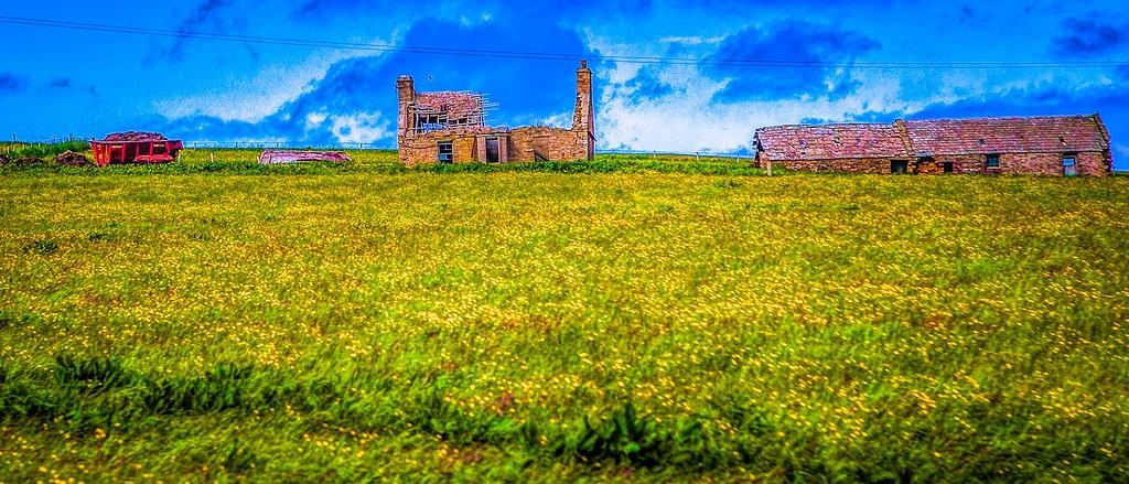 苏格兰奥克尼岛(Orkney Islands),牧场牛羊_图1-9