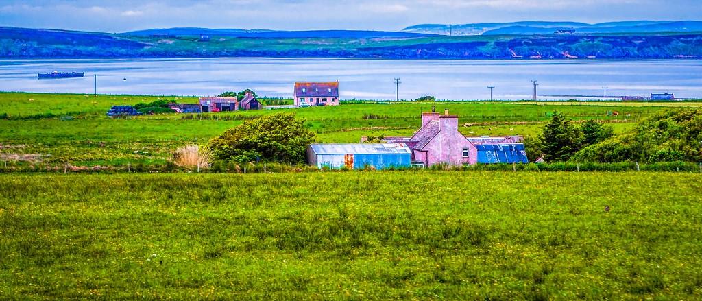 苏格兰奥克尼岛(Orkney Islands),牧场牛羊_图1-12