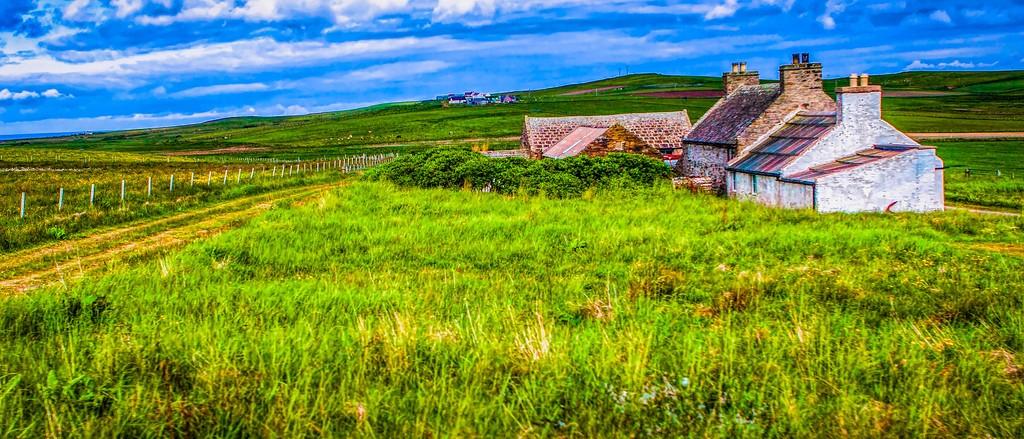 苏格兰奥克尼岛(Orkney Islands),牧场牛羊_图1-2