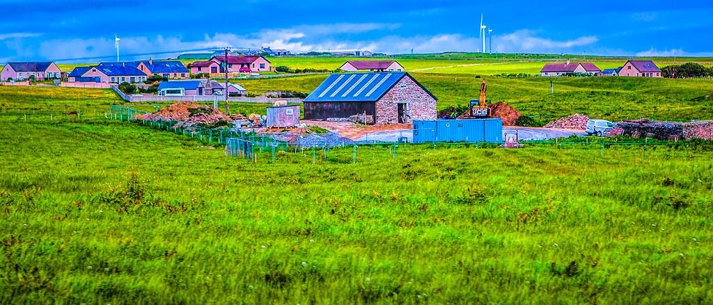 苏格兰奥克尼岛(Orkney Islands),牧场牛羊_图1-4