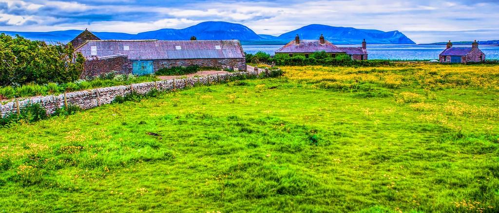 苏格兰奥克尼岛(Orkney Islands),牧场牛羊_图1-18