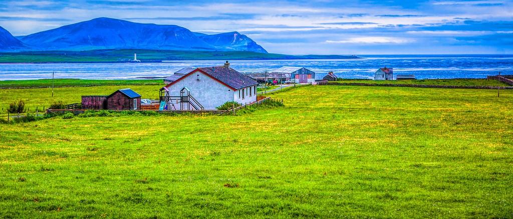 苏格兰奥克尼岛(Orkney Islands),牧场牛羊_图1-25