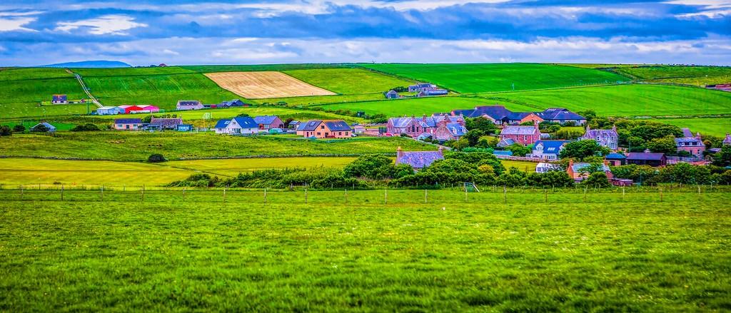 苏格兰奥克尼岛(Orkney Islands),牧场牛羊_图1-29