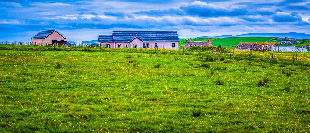 苏格兰奥克尼岛(Orkney Islands),牧场牛羊_图1-27