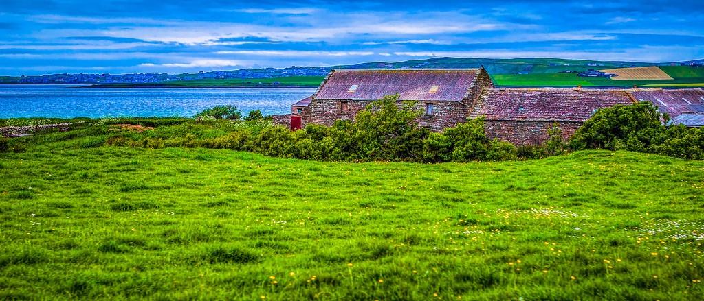 苏格兰奥克尼岛(Orkney Islands),牧场牛羊_图1-34