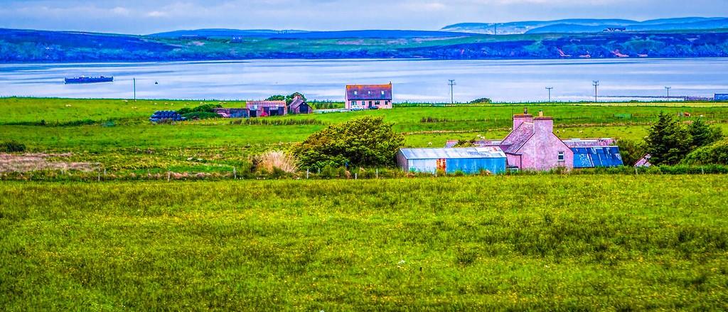 苏格兰奥克尼岛(Orkney Islands),牧场牛羊_图1-38