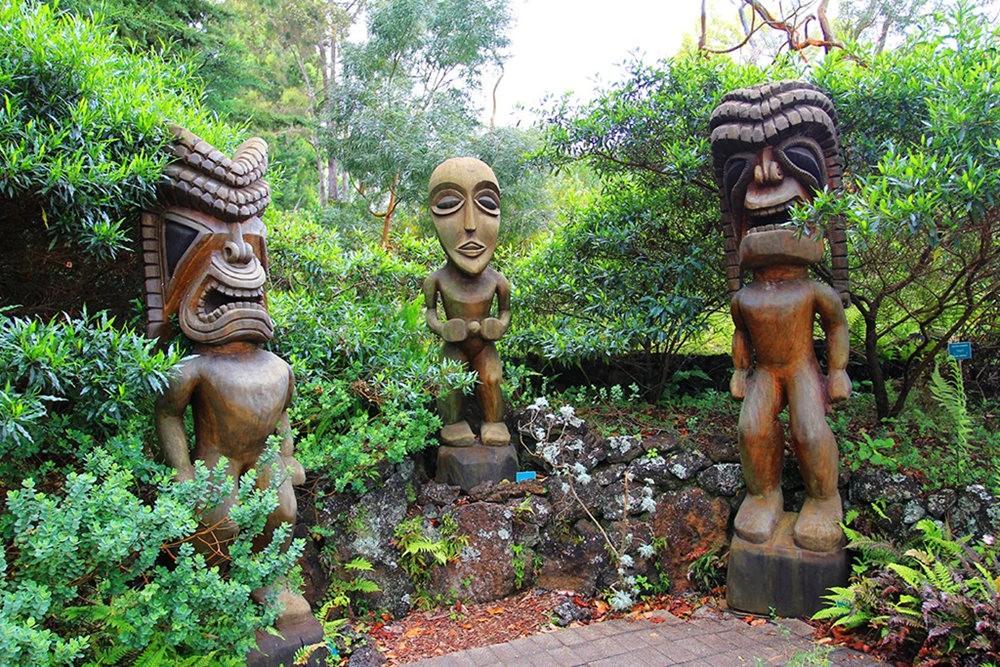 毛伊岛的库拉植物园_图1-5