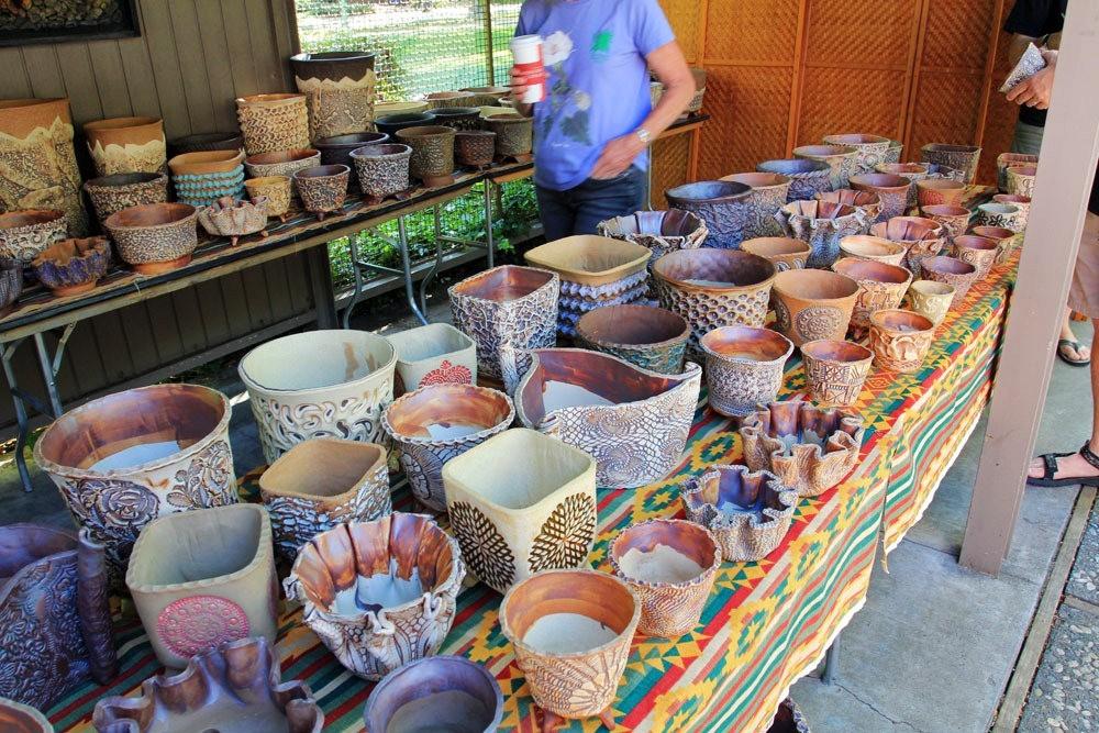 第53届萨克拉曼多仙人掌与肉质学会展览和销售_图1-23