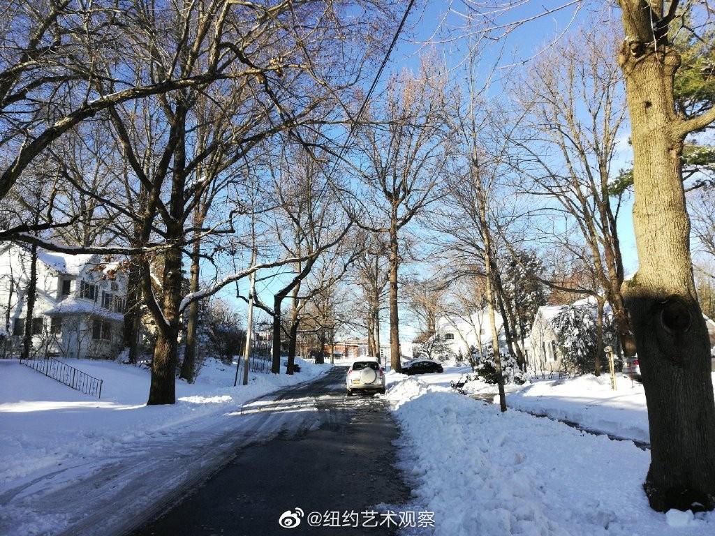 2020年12月16日纽约暴雪,郊区银装素裹_图1-13