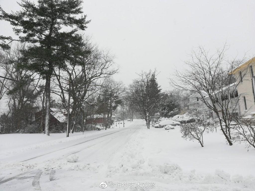 2020年12月16日纽约暴雪,郊区银装素裹_图1-11