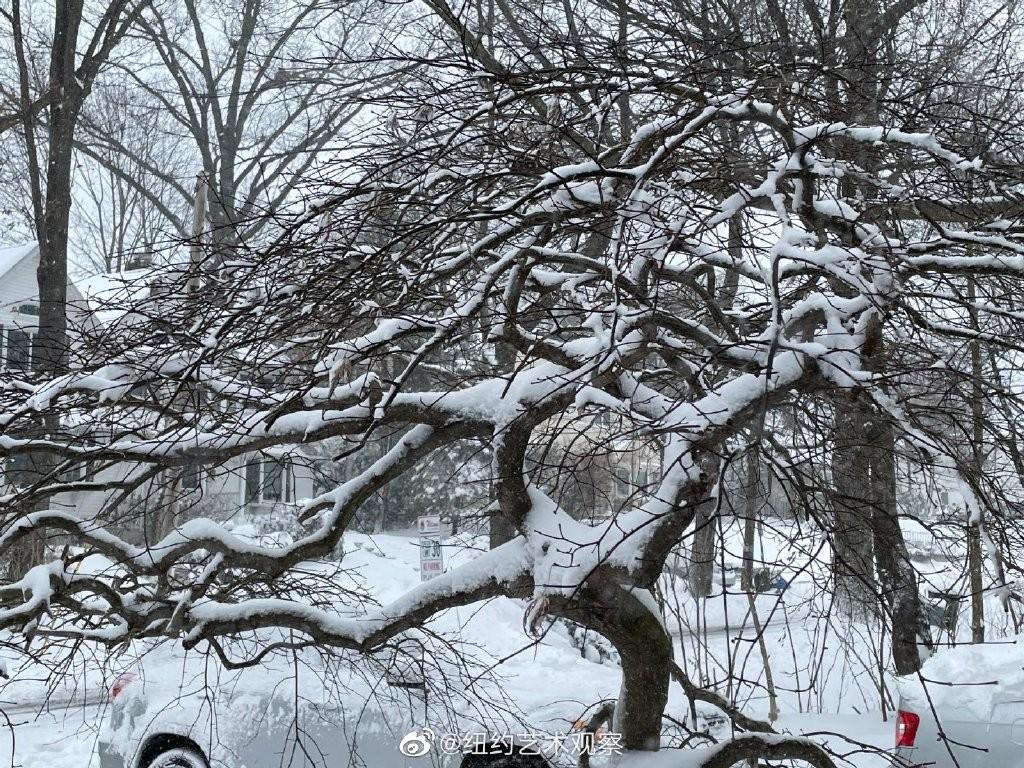 2020年12月16日纽约暴雪,郊区银装素裹_图1-14