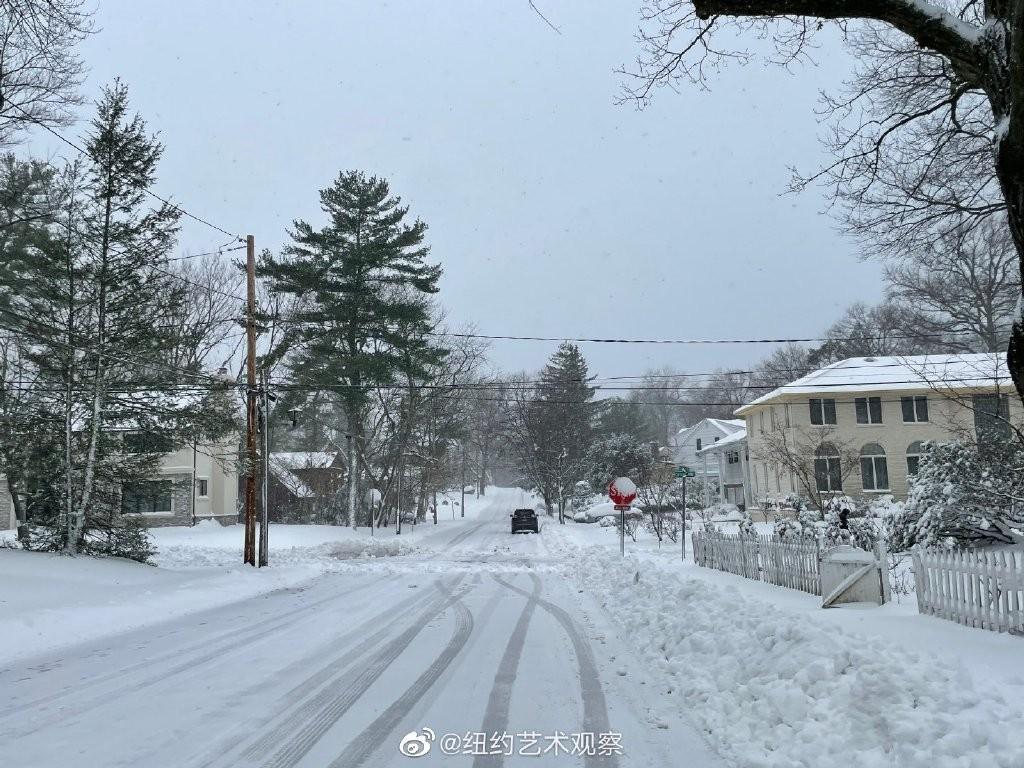 2020年12月16日纽约暴雪,郊区银装素裹_图1-10