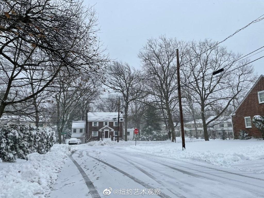 2020年12月16日纽约暴雪,郊区银装素裹_图1-15