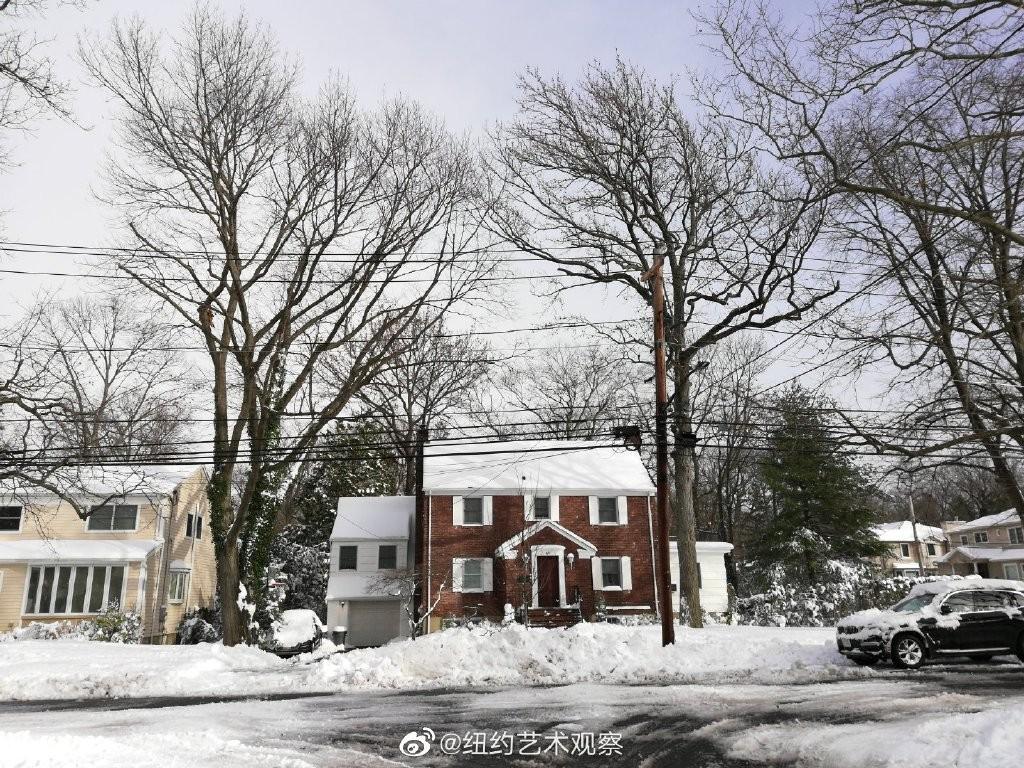 2020年12月16日纽约暴雪,郊区银装素裹_图1-4