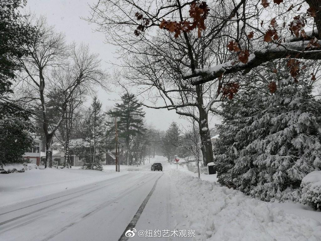 2020年12月16日纽约暴雪,郊区银装素裹_图1-5
