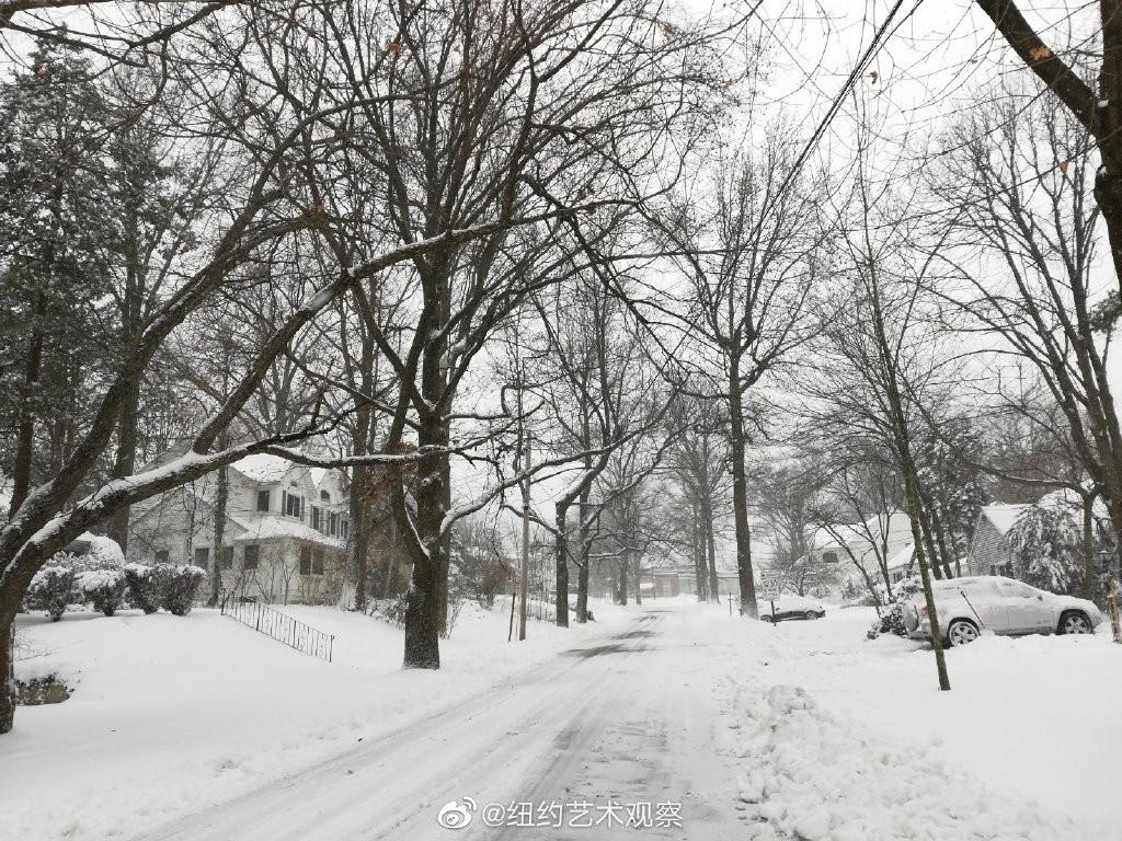 2020年12月16日纽约暴雪,郊区银装素裹_图1-6