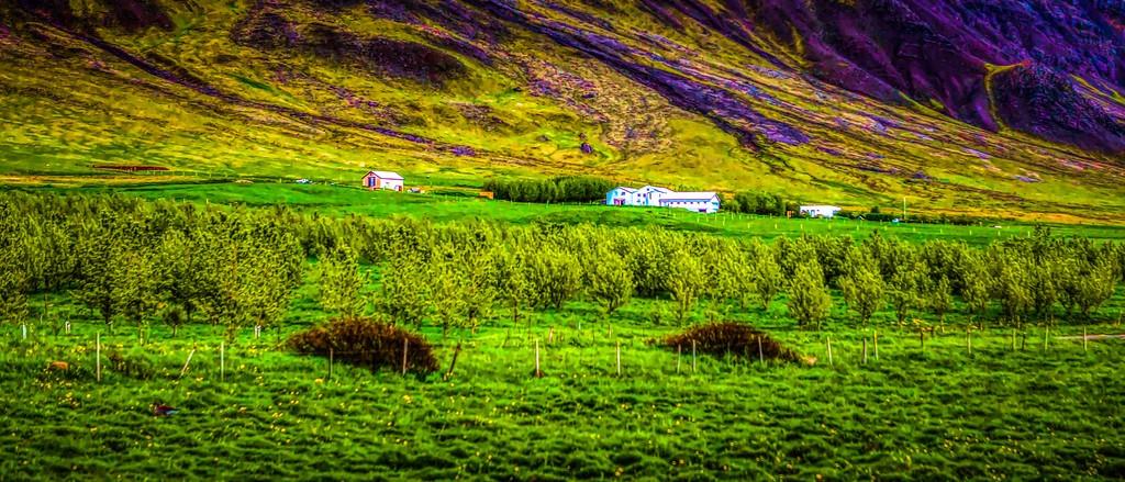 冰岛风采,自然环抱_图1-5