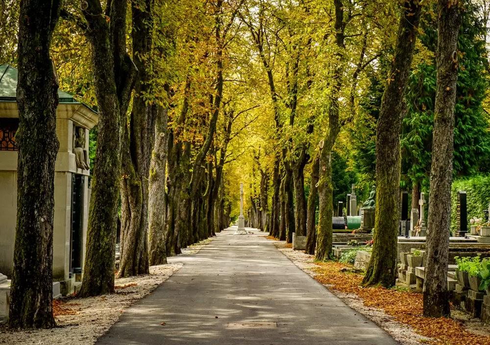 在萨格勒布参观米罗戈日公墓_图1-11