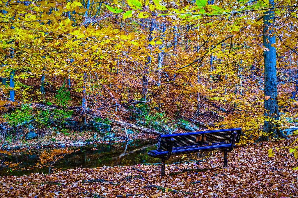 宾州雷德利克里克公园(Ridley creek park),走走看看_图1-22