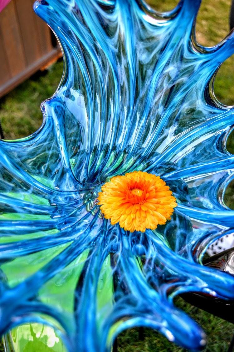 花卉日记之---4_图1-12