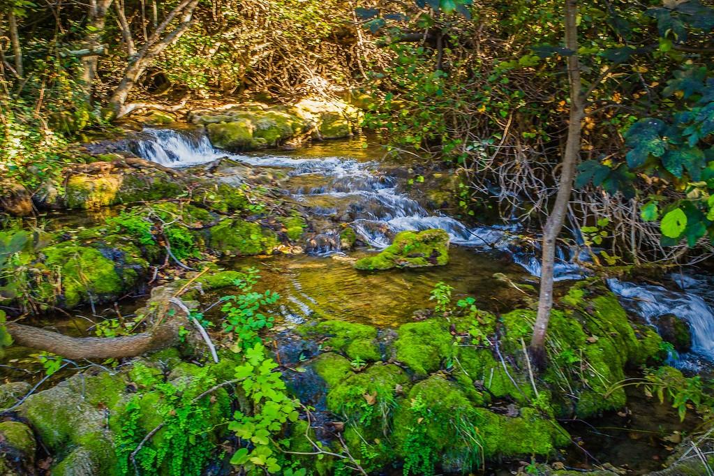 克罗地亚克尔卡国家公园(Krka National Park),脚下的瀑布_图1-15