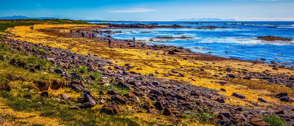 冰岛风采,远望雪山_图1-24