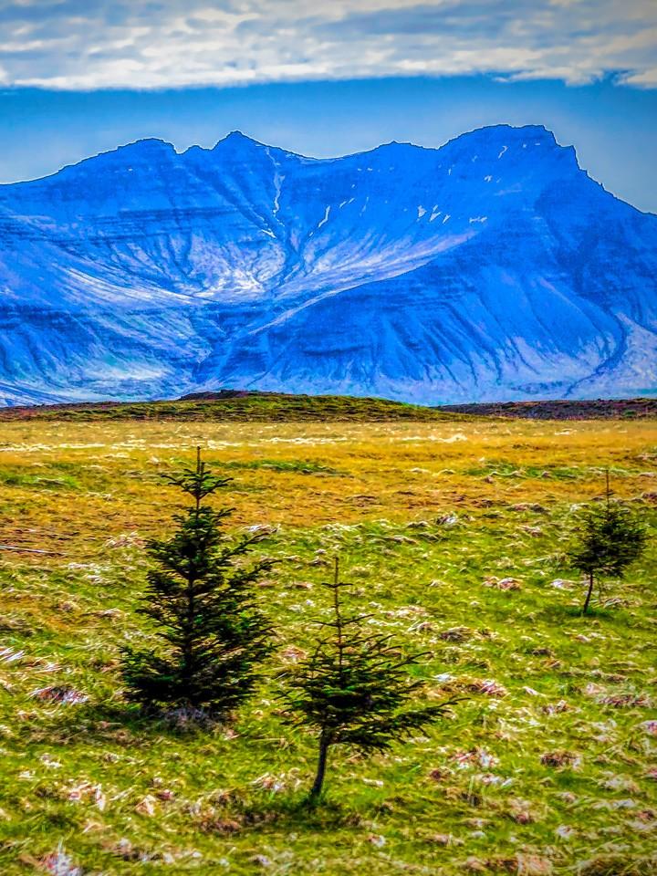 冰岛风采,自然人文_图1-6
