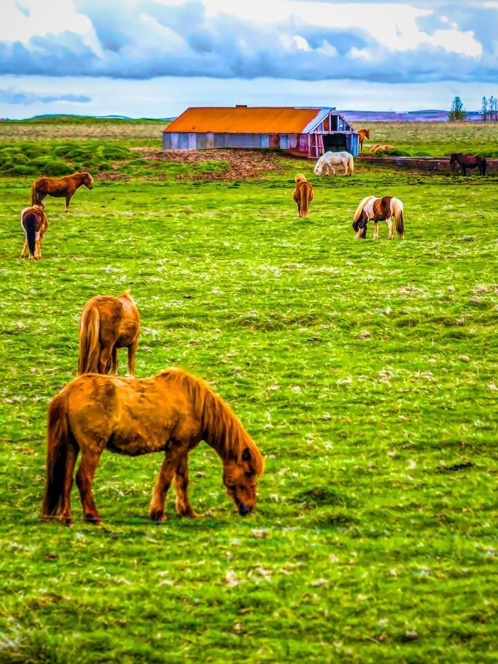冰岛风采,自然人文_图1-30