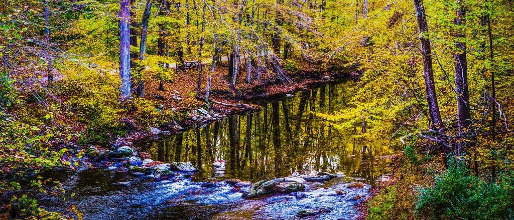 宾州雷德利克里克公园(Ridley creek park),秋意浓浓_图1-24