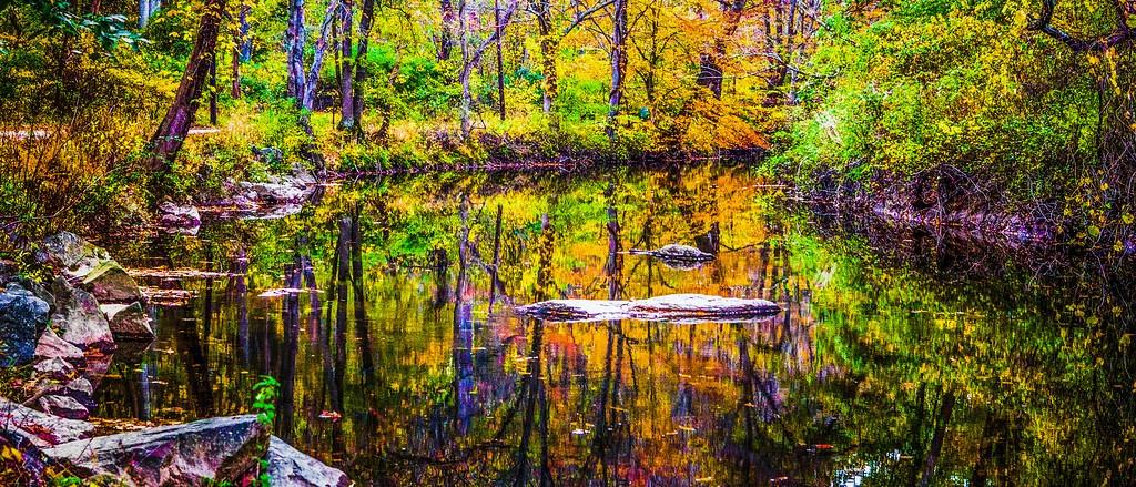 宾州雷德利克里克公园(Ridley creek park),秋意浓浓_图1-21