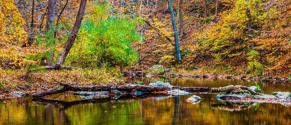 宾州雷德利克里克公园(Ridley creek park),秋意浓浓_图1-23
