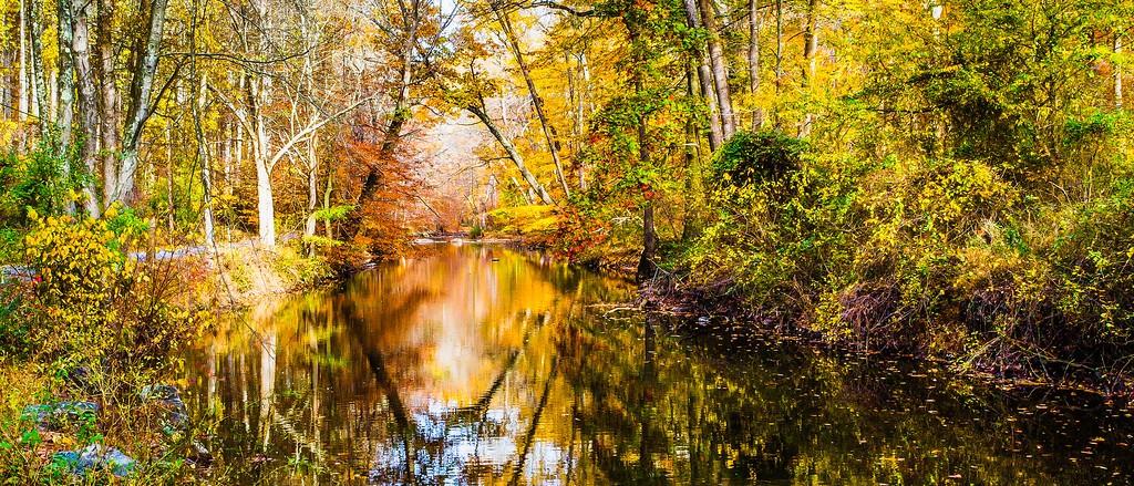 宾州雷德利克里克公园(Ridley creek park),秋意浓浓_图1-22