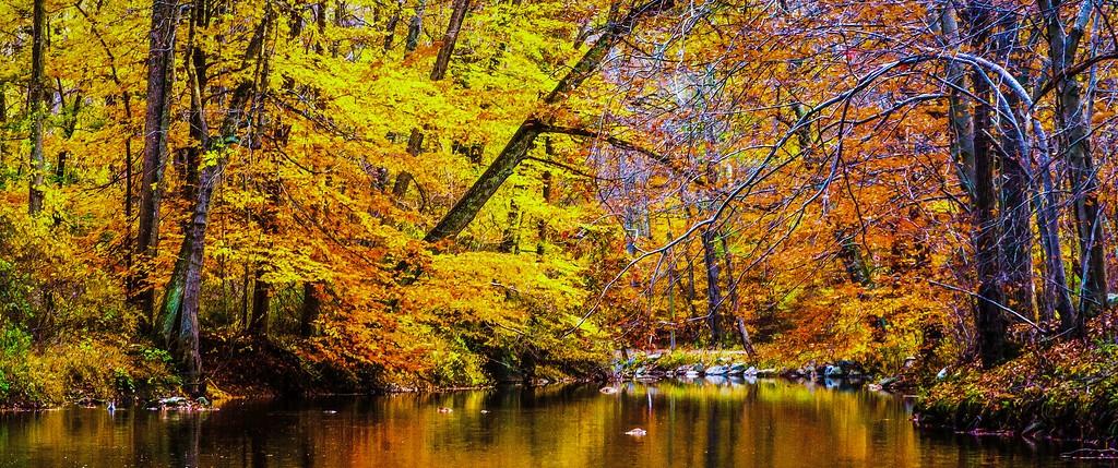 宾州雷德利克里克公园(Ridley creek park),秋意浓浓_图1-17