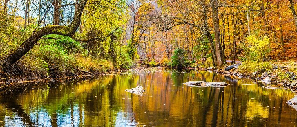 宾州雷德利克里克公园(Ridley creek park),秋意浓浓_图1-18