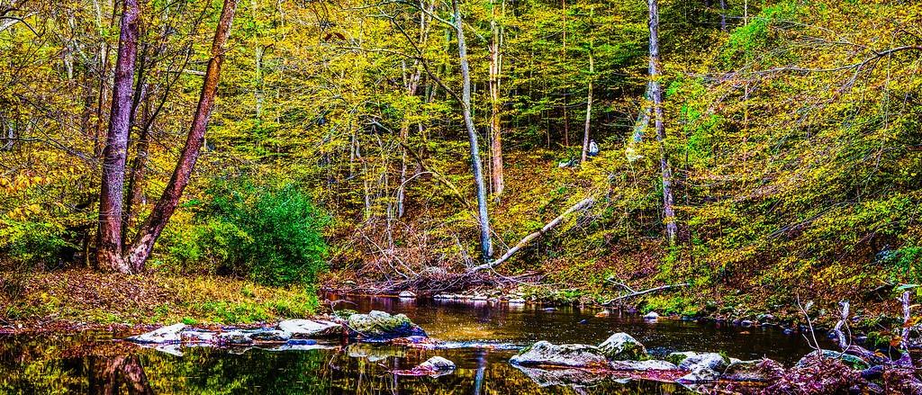 宾州雷德利克里克公园(Ridley creek park),秋意浓浓_图1-20