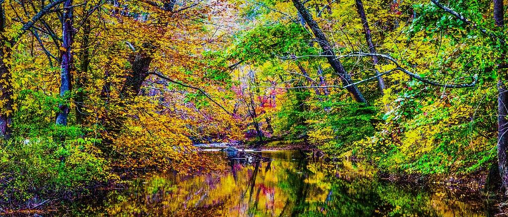 宾州雷德利克里克公园(Ridley creek park),秋意浓浓_图1-16