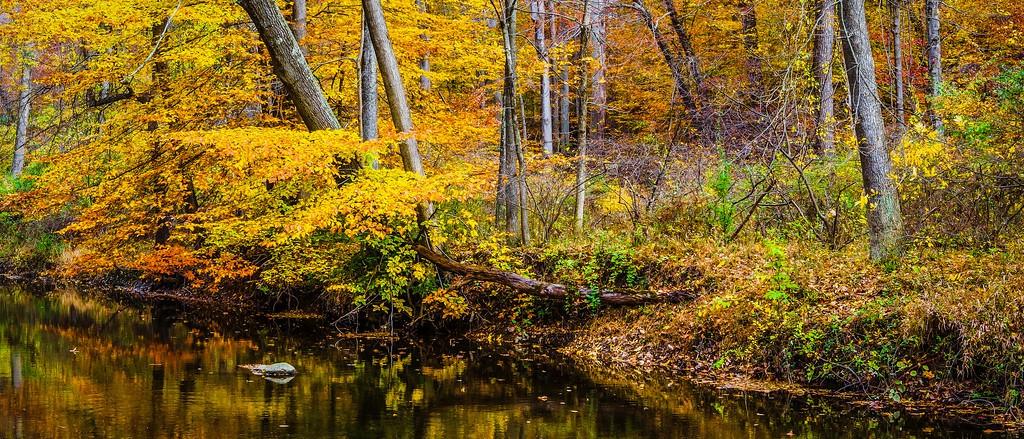 宾州雷德利克里克公园(Ridley creek park),秋意浓浓_图1-14