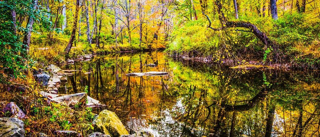 宾州雷德利克里克公园(Ridley creek park),秋意浓浓_图1-1