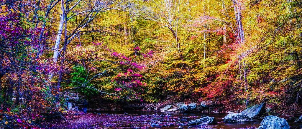 宾州雷德利克里克公园(Ridley creek park),秋意浓浓_图1-3