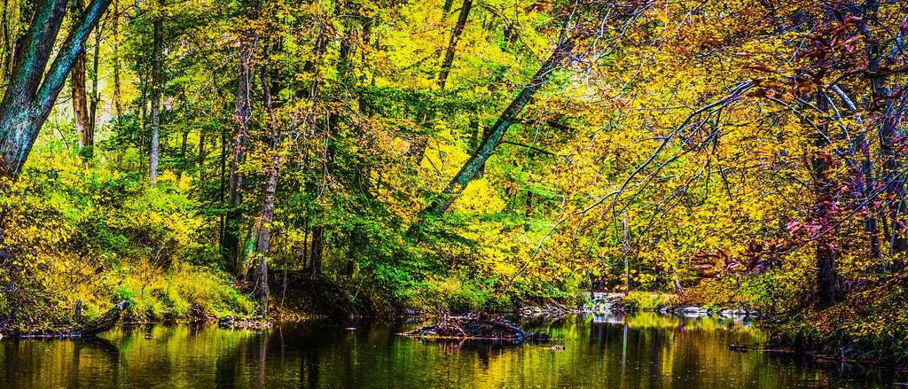 宾州雷德利克里克公园(Ridley creek park),秋意浓浓_图1-4