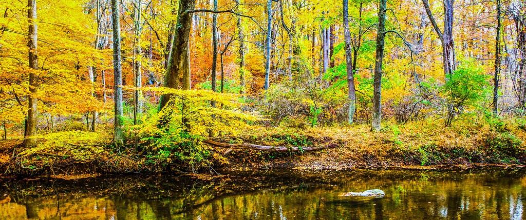 宾州雷德利克里克公园(Ridley creek park),秋意浓浓_图1-8
