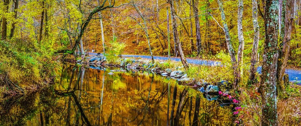 宾州雷德利克里克公园(Ridley creek park),秋意浓浓_图1-7