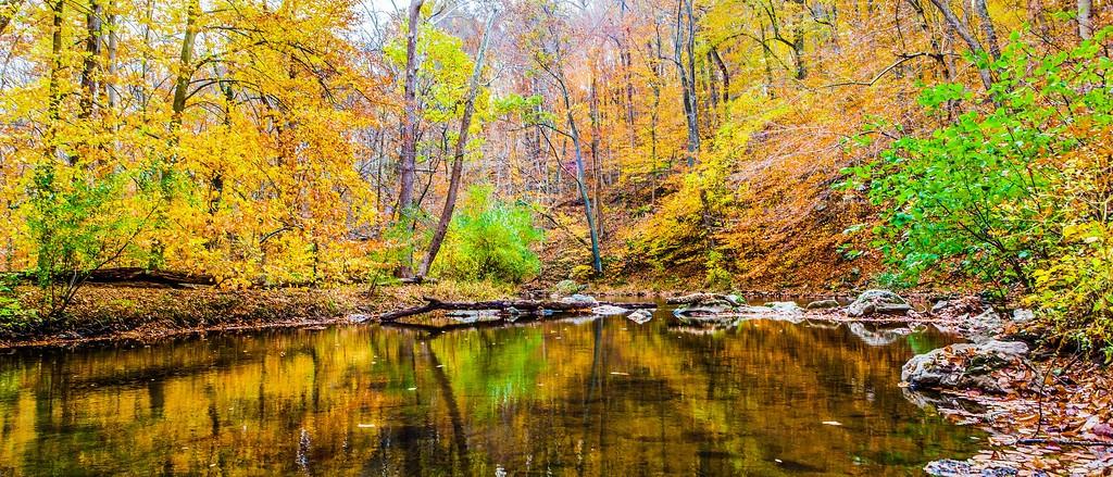 宾州雷德利克里克公园(Ridley creek park),秋意浓浓_图1-9
