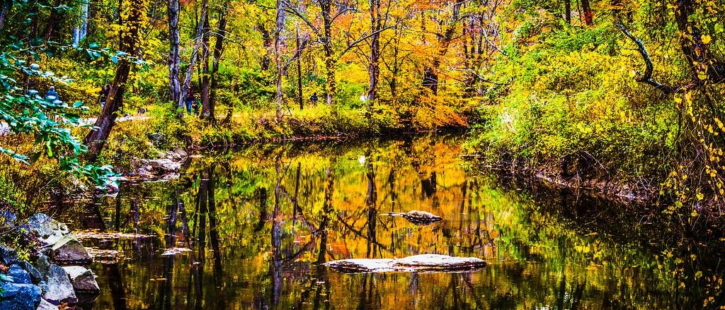 宾州雷德利克里克公园(Ridley creek park),秋意浓浓_图1-10