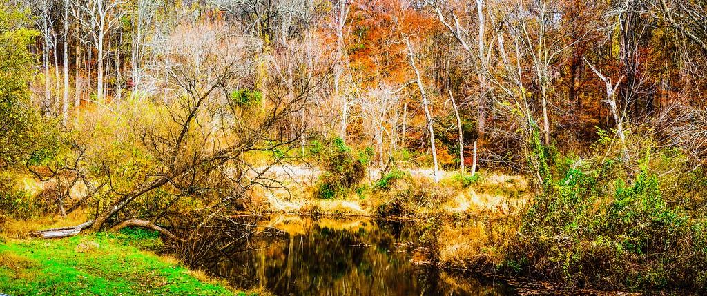 宾州雷德利克里克公园(Ridley creek park),秋意浓浓_图1-11