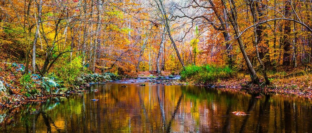 宾州雷德利克里克公园(Ridley creek park),秋意浓浓_图1-12