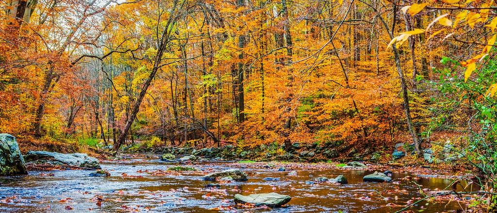 宾州雷德利克里克公园(Ridley creek park),秋意浓浓_图1-25