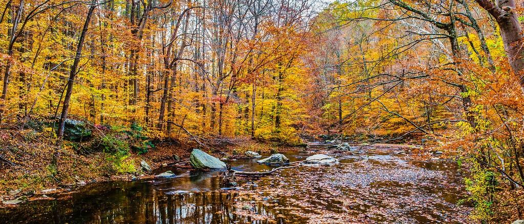 宾州雷德利克里克公园(Ridley creek park),秋意浓浓_图1-27