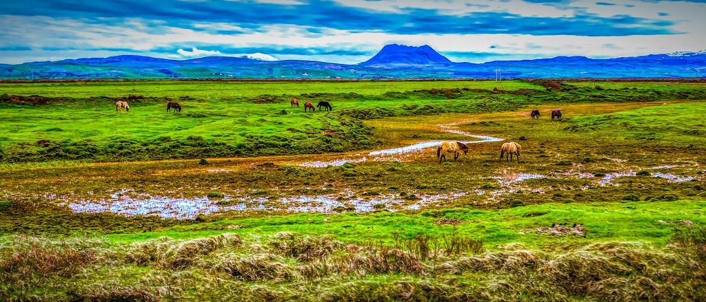 冰岛风采,自然魅力_图1-33