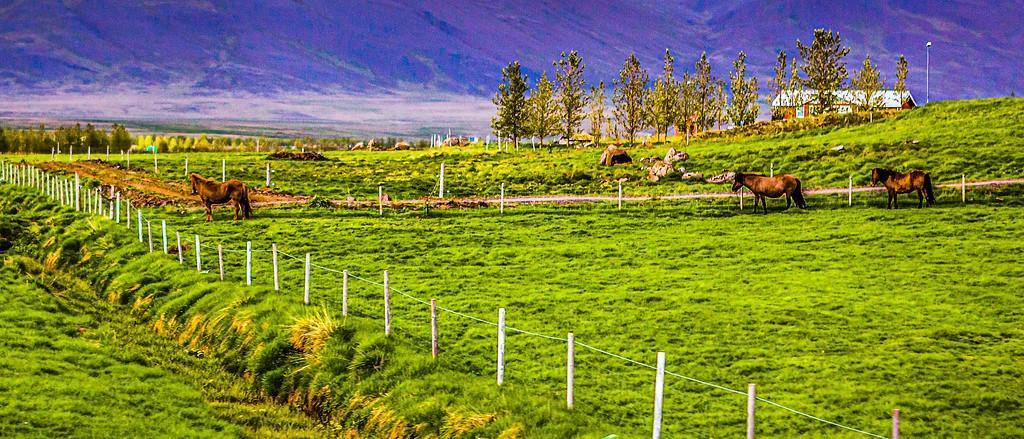 冰岛风采,自然魅力_图1-27